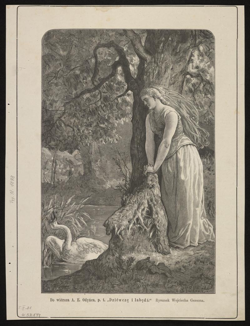 Ilustracja Do Wiersza Dziewczę I łabędź Antoniego Edwarda